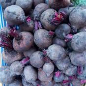 Beetroot Fruit